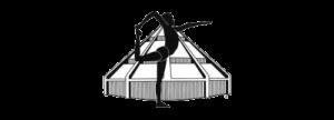 logotje-iyengar